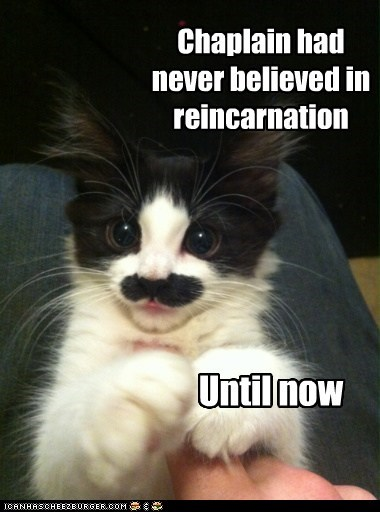 Chaplain had never believed in reincarnation Until now