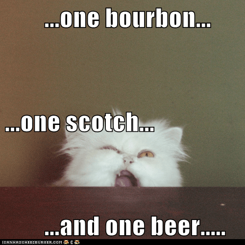 animals beer bourbon cat George Thorogood I Can Has Cheezburger scotch - 5623118336
