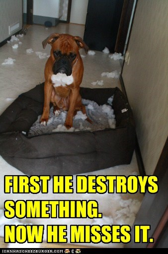 FIRST HE DESTROYS SOMETHING. NOW HE MISSES IT.