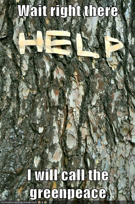emergency green peace help tree weird kid - 5624327424