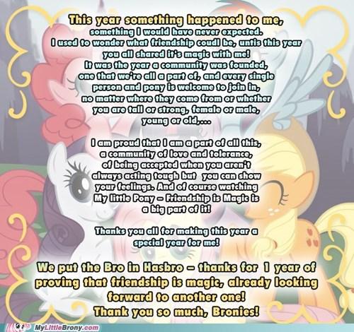 best of week Bronies fandom Hasbro IRL ponies - 5624667648