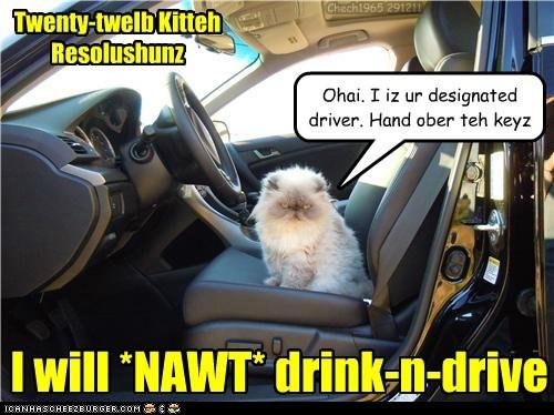 Twenty-twelb Kitteh Resolushunz I will *NAWT* drink-n-drive Ohai. I iz ur designated driver. Hand ober teh keyz Chech1965 291211