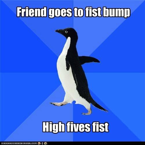 Awkward fist bump fists friends high fives penguins socially awkward penguin