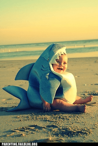 adorable,baby,beach,costume,cute,dawww,Parenting Fail,shark