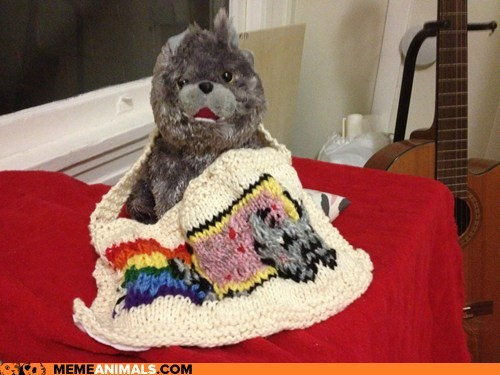 awesome,cozy,crafts,cute,Knitted,Nyan Cat,stuffed animals,win