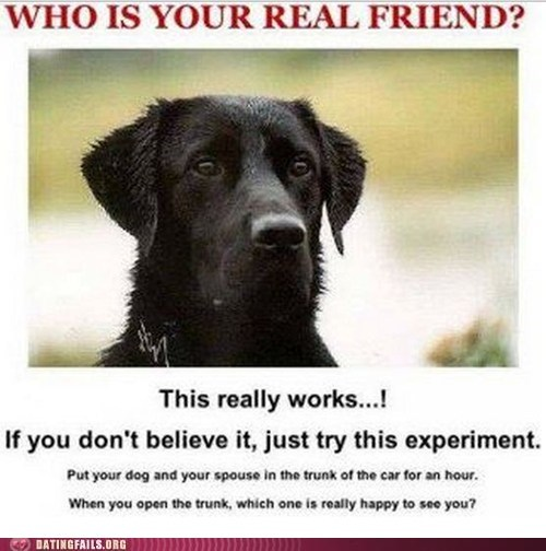 dogs experiment Hall of Fame spouse - 5627031808