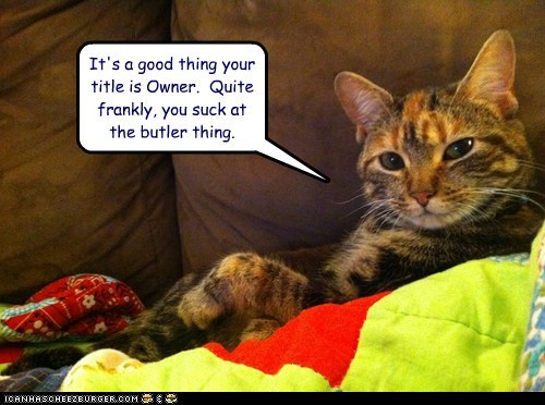 bad best of the week butler caption captioned cat FAIL good Hall of Fame owner role thing title you suck - 5627714816