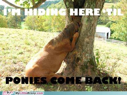 hiding IRL new episode ponies this week - 5631750400