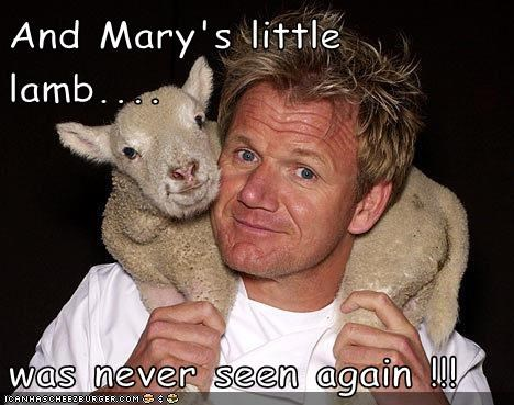 And Mary's little lamb.... was never seen again !!!