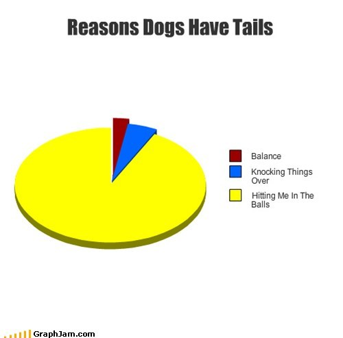 dogs,Pie Chart,super effective,tails,tailwhip
