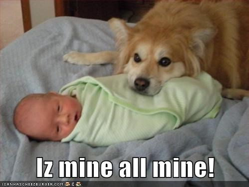 all mine baby best of the week child Hall of Fame human infant mine mixed breed not yours whatbreed