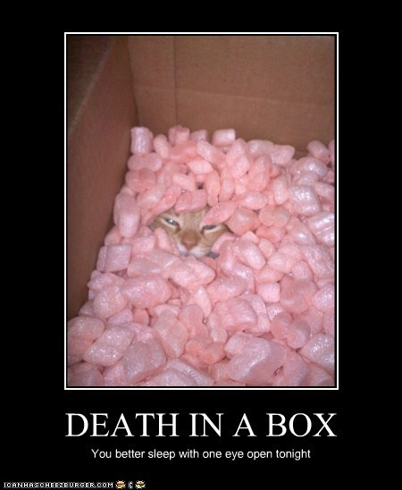 DEATH IN A BOX You better sleep with one eye open tonight