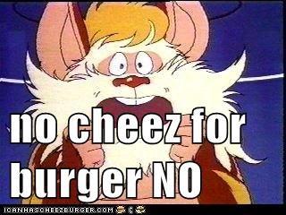 Cheezburger Image 5634908160