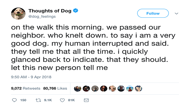 Hilarious Dog Thoughts