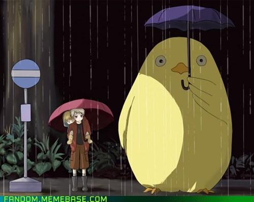 crossover,Fan Art,Germany,gilbird,hetalia,prussia,totoro