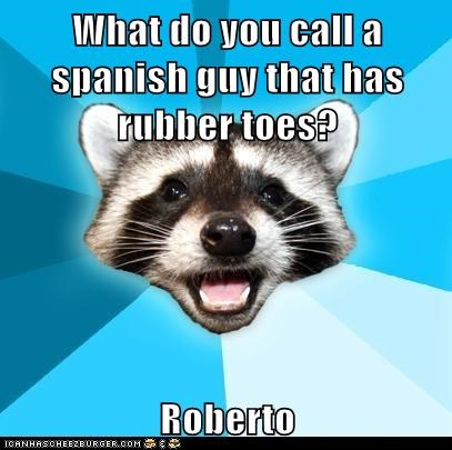 Lame Pun Coon puns raccoons roberto rubber spanish toes - 5637412864