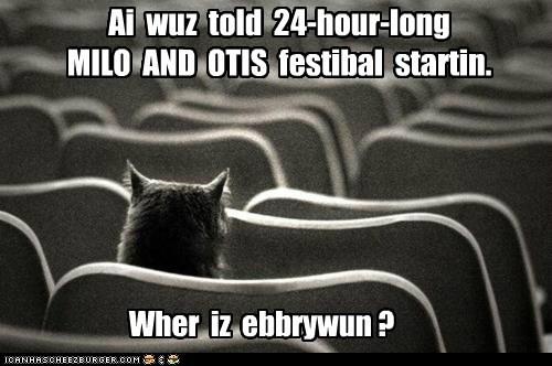 Ai wuz told 24-hour-long MILO AND OTIS festibal startin. Wher iz ebbrywun ?
