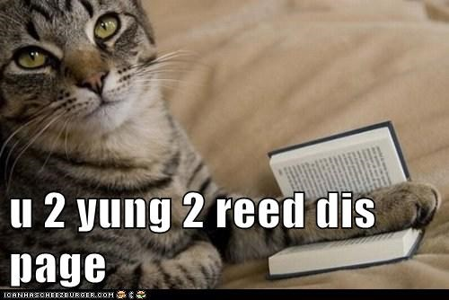 book,cat,I Can Has Cheezburger,parental advisory,too young,young