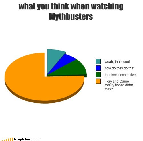 mythbusters,now kiss,Pie Chart,tory belleci