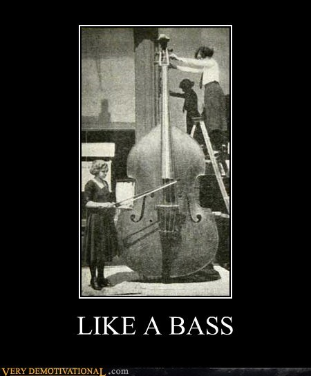 bass,hilarious,Like a Boss,wtf