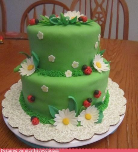 cake,daisies,epicute,fondant,green,ladybugs