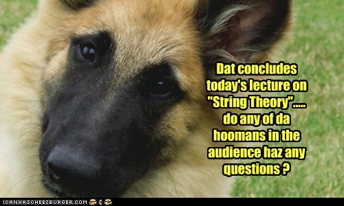 "Dat concludes today's lecture on ""String Theory""..... do any of da hoomans in the audience haz any questions ?"