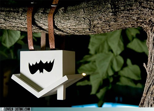 bat,branch,hang,house,tree,upside down