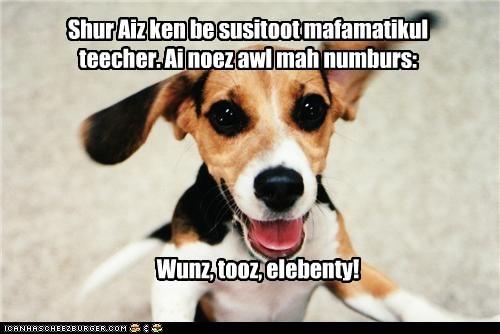 beagle ears elebenty excited happy happy dog math math class mathematics puppy smile smiling substitute substitute teacher teach teacher - 5646122240