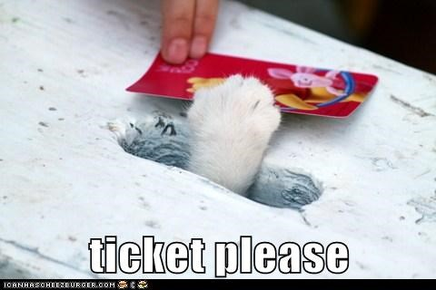 caption captioned cat paw please slot ticket - 5646743552