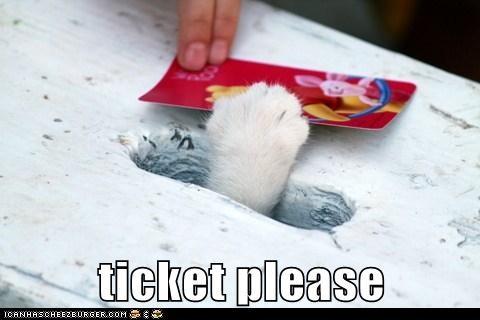 caption captioned cat paw please slot ticket - 5646743552