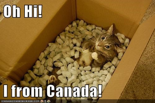 animals box Canada cat I Can Has Cheezburger mail packaging popcorn - 5647097344