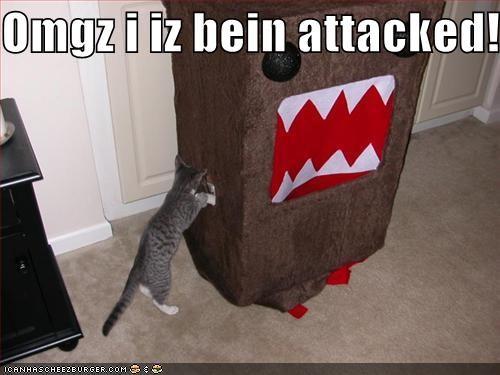 Cheezburger Image 564713216