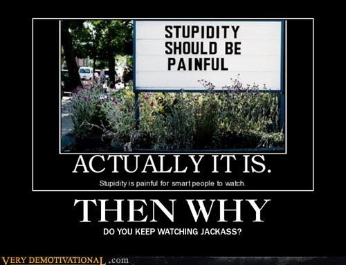 hilarious jackass stupidity wtf - 5647305216