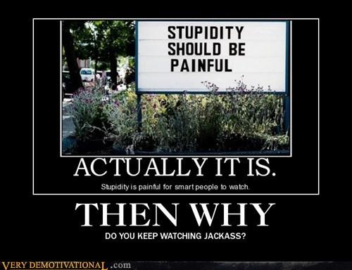 hilarious jackass stupidity wtf - 5647305216