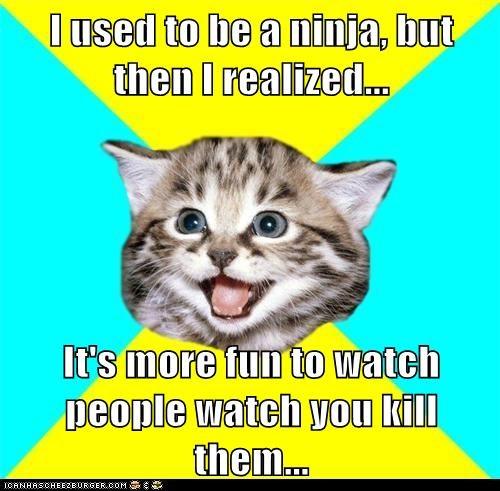 Cats Happy Kitten kitten murder ninjas violence watching - 5647476480
