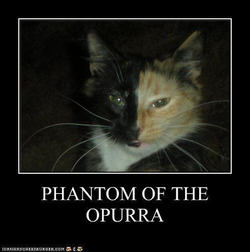 caption captioned cat coloration coloring mask musical opera Phantom phantom of the opera pun purr - 5647969536