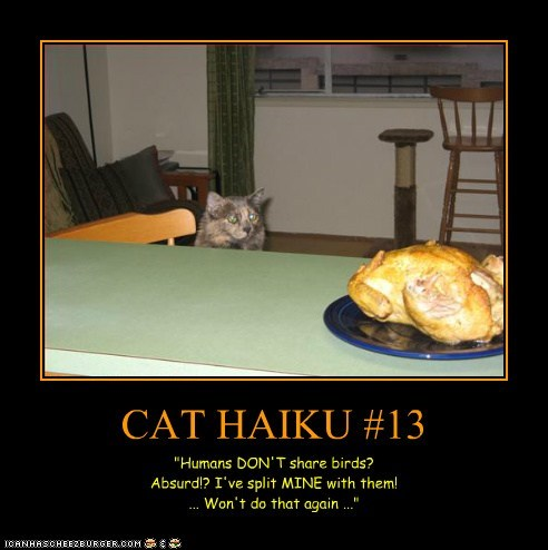 "CAT HAIKU #13 ""Humans DON'T share birds? Absurd!? I've split MINE with them! ... Won't do that again ..."""
