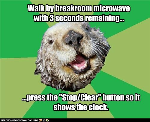 clocks,microwaves,numbers,ocd,OCD Otter,otters,timer