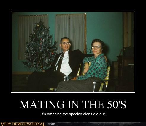 50s hilarious mating uggos wtf - 5648786944
