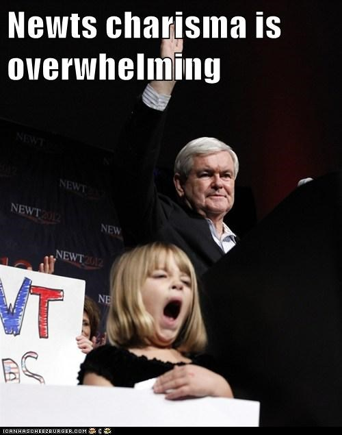 newt gingrich political pictures - 5649453312