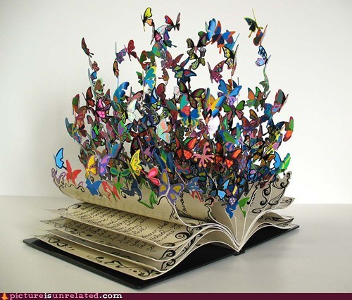 book,butterflies,life,wtf