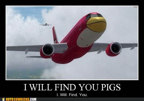 airplane,angry birds,demotivational,Hall of Fame,pig