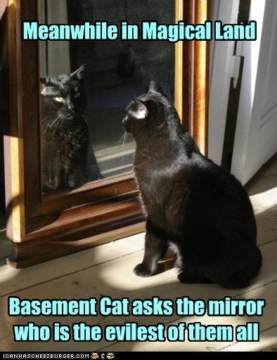 Meanwhile in Magical Land Basement Cat asks the mirror who is the evilest of them all