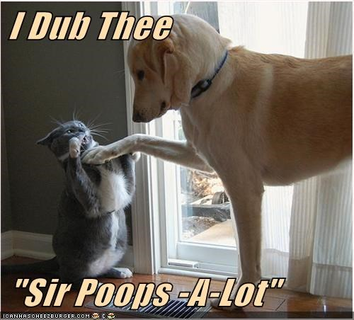 "I Dub Thee ""Sir Poops -A-Lot"""