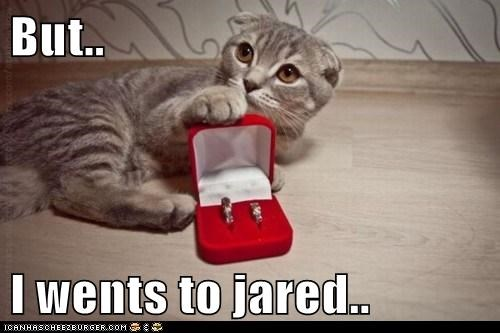 but,caption,captioned,cat,commercial,diamond,Jared,reference,rejection,ring,Sad,upset,went