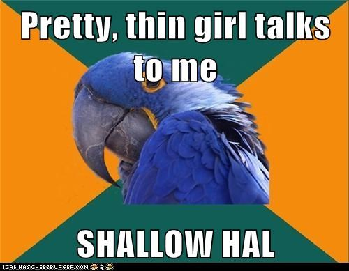 birds,fat,movie references,movies,paranoid,Paranoid Parrot,parrots,pretty,shallow hal
