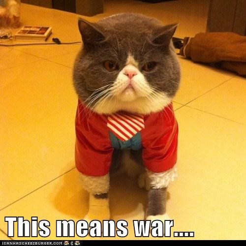 caption,captioned,cat,costume,do not want,dressed up,means,suit,this,tie,war