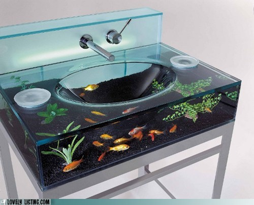 aquarium,bathroom,best of the week,fish,fixture,sink,tank,water