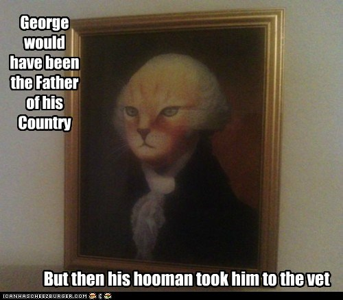 caption,captioned,cat,catface,country,Father,george washington,hypothetical,lolwut,portrait,reality,vet