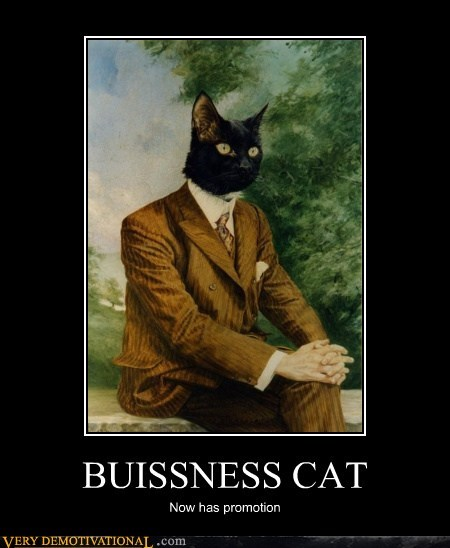 Business Cat hilarious promotion suit